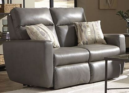 Picture of 865 Knock Out Loveseat